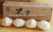Black Garlic Helping in adjusting blood pressure, blood sugar, blood lipid