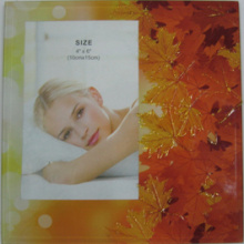 "Home Decoration Glass Photo Frame 4""X6"""