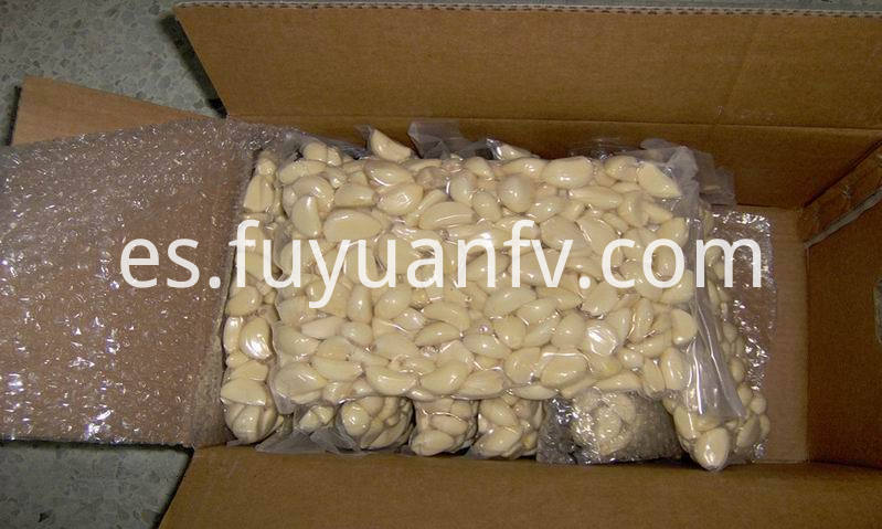 vacuum packed peeled garlic