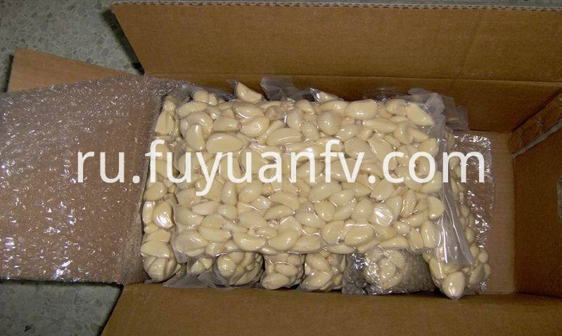 vacuum packed peeled fresh garlic