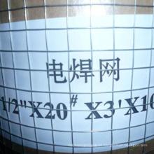 Produtos de fábrica Malha de arame soldada galvanizada de fio soldado SS