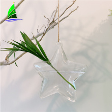 Sternform-Glasblumen-hängende Hydroponik-Vasen