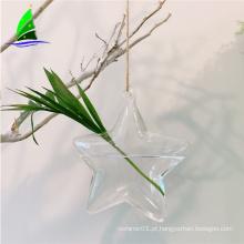 Flor de vidro da forma da estrela que pendura vasos hidropônicos