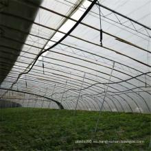 Sistema de riego por aspersión de hortalizas agrícolas
