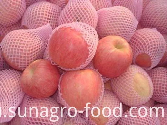 Excellent Variety Of Fuji Apple