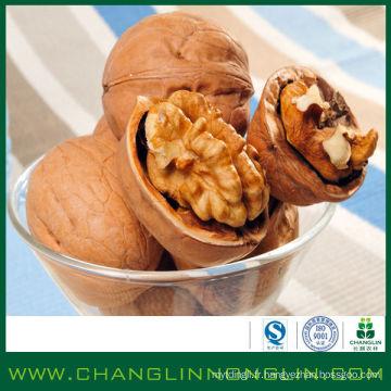 Facile à emporter grain de noix de nourriture alibaba fournisseur d'or en coquille