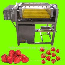 brush type washing machine for strawberry