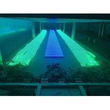 Digital LED 50m/Roll Ws2811 Ws2812b Factory LED Lighting