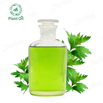 Chinese herb extract mugwort leaf essential oil blumea oil