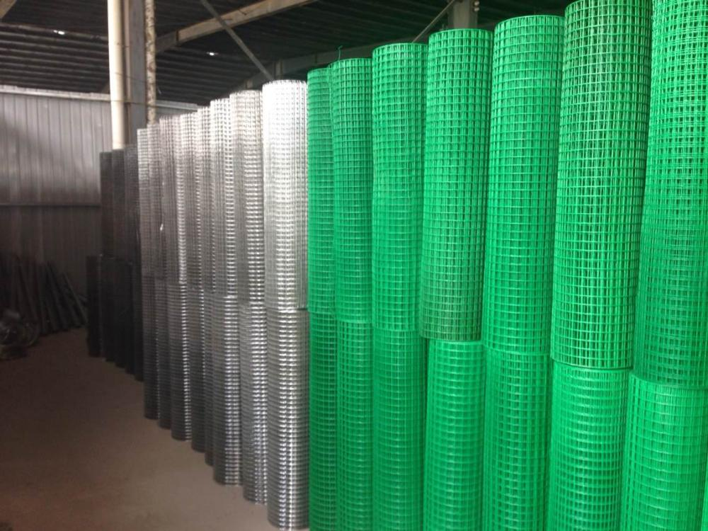 All size Welded wire Mesh Roll