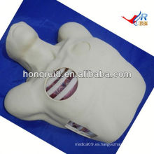 Maniquí de Drenaje Pleural ISO, Descompresión de Pneumotórax, drenaje de toracocentesis