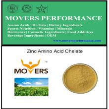 Chélate d'acide aminé de zinc de haute qualité