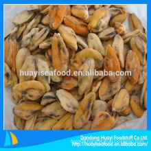 seafood frozen boiled mussel meat