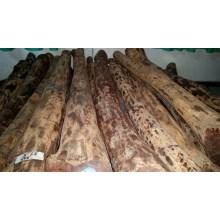 Ein Grad Red Sandal Wood Log