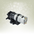 Electric high-pressure micro gear pump