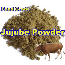 Poudre de Jujube pour l'alimentation avec le bas prix (qualité d'exportation)