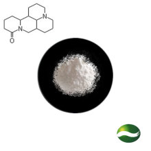 Favorable Price Plant Extract 99% Sophoridine