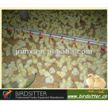 professional broiler and breeder use poultry drinkers