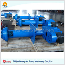 Bp Series Vertical Submersible Sump Slurry Pump