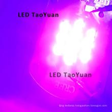 LED Lights UV Rays 395nm, 415nm 25W