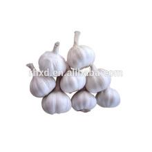 Нового урожая 2014 свежий ассоциация чеснок