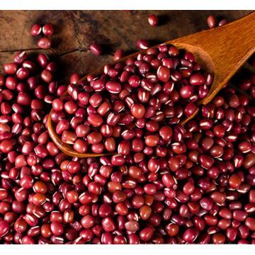 Красная фасоль Маленькие красные бобы