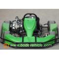 Carreras de Go Karts para venta 110cc Racing Buggy