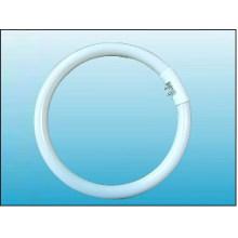 T5 Lampe fluorescente circulaire (FCLT5/D)