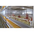 Broiler cage system for poultry farm equipment
