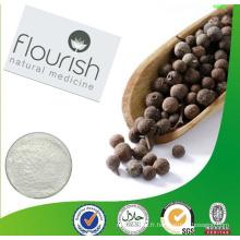 Échantillon gratuit 100% Matières premières naturelles Extrait de poivre noir 10% de pipérine