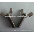 Stailess Steel Wing Bolt