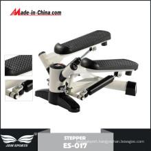Popular Style Indoor Use NEMA Twist Stepper Motor (ES-017)