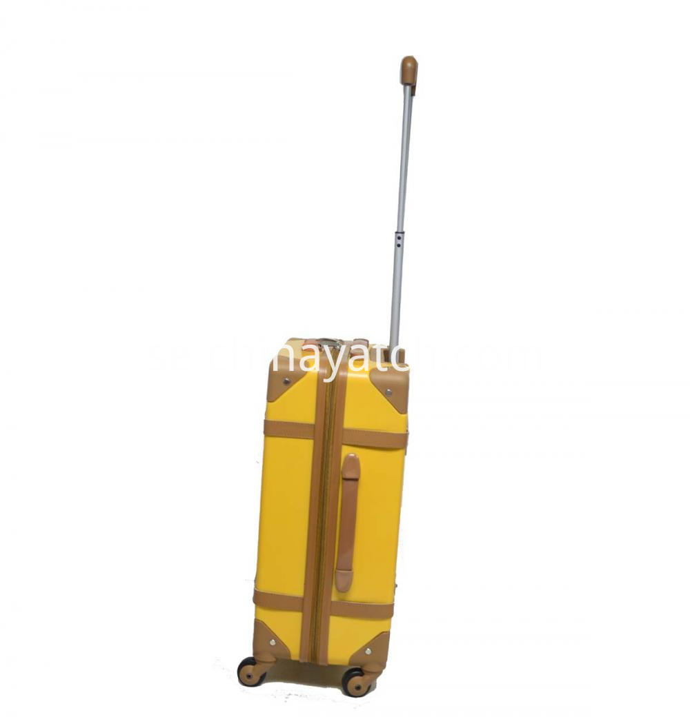 Trolley Case Upright