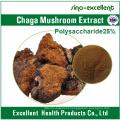 Chaga Mushroom Extract / Inonotus Obliquus Extract