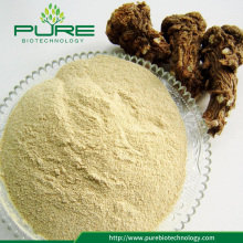100% Natural Angelica Sinensis Root Extract Powder