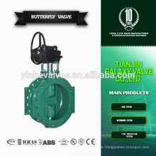 Double Eccentric Flanged Butterfly Valve with Gear Box
