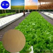 Fertilizante de quelato compuesto de aminoácidos de zinc, fertilizante para cultivos