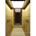 Shandong Fujizy Passenger Elevator
