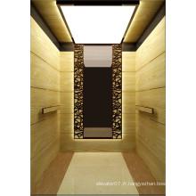 Shandong Fujizy Passager Ascenseur