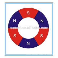 Strong Neodymium multipole ring magnet