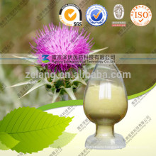 Pharmaceutical Grade Silymarin Silybin for Antibiotics