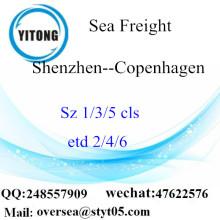 Shenzhen Port LCL củng cố đến Copenhagen