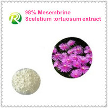 Suministro de fábrica de alta calidad directamente Sceletium Tortuosum Extract Mesembrine 98%