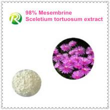 Approvisionnement d'usine de haute qualité directement Sceletium Tortuosum extrait Mesembrine 98%