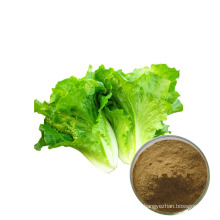 Factory supply nature pure wild lettuce powder