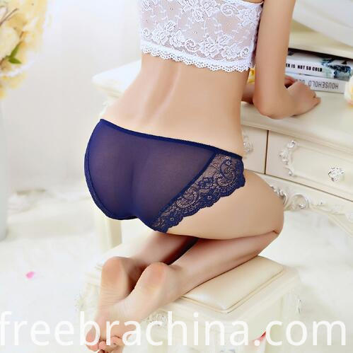 blue lace briefs