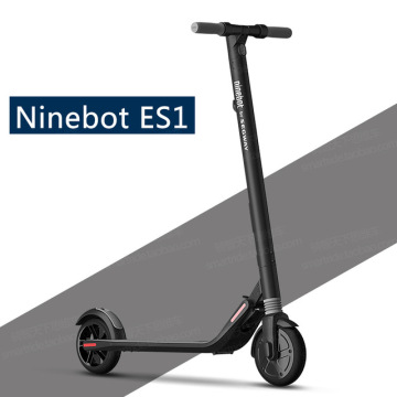 Ninebot Folding Kick Scooter per adulti