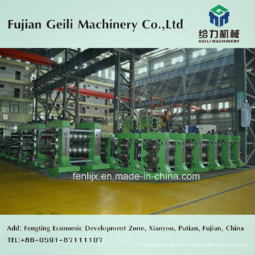 Ligne de production de laminage d'acier (service clé en main)