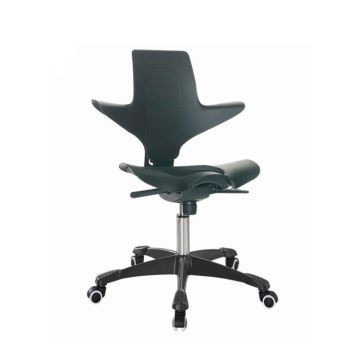 OEM Supply for Height Adjustable Chairs Ergonomic Swivel Office Chairs Height Adjustable Saddle Chairs supply to Bhutan Supplier