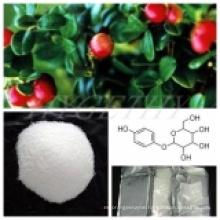 Pure 98% Peony Bark Extract Paeonol CAS: 552-41-0